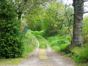 Chemin Le Theil Bocage