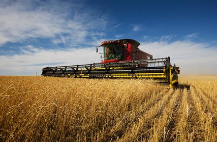 pratique,commerce,activités agricole